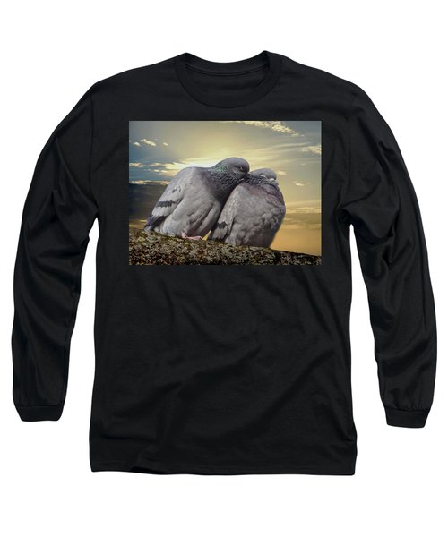Pigeons In Love, Smooching On A Branch At Sunset Long Sleeve T-Shirt