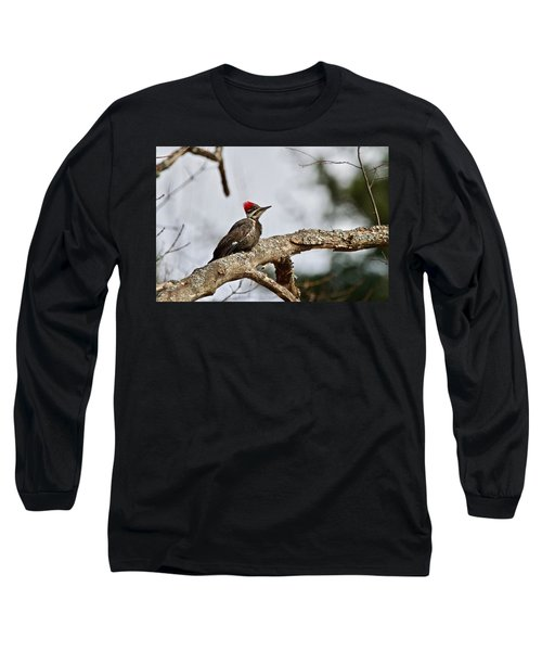 Long Sleeve T-Shirt featuring the photograph pileated Woodpecker 1068  by Michael Peychich
