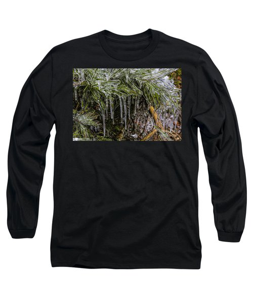 Pine Needlecicles Long Sleeve T-Shirt by Barbara Bowen