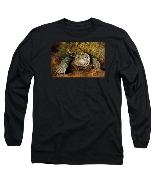 Pink Eyes Long Sleeve T-Shirt by Robert Charity