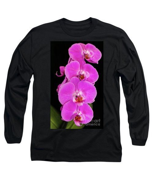 Pink Orchid Against A Black Background Long Sleeve T-Shirt