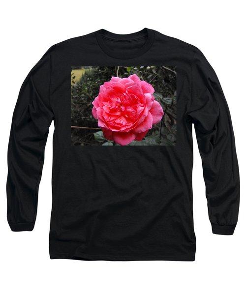Pink Rose Long Sleeve T-Shirt by Adam Cornelison