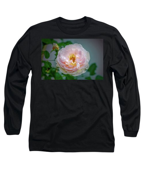 Pink Rose #c3 Long Sleeve T-Shirt by Leif Sohlman