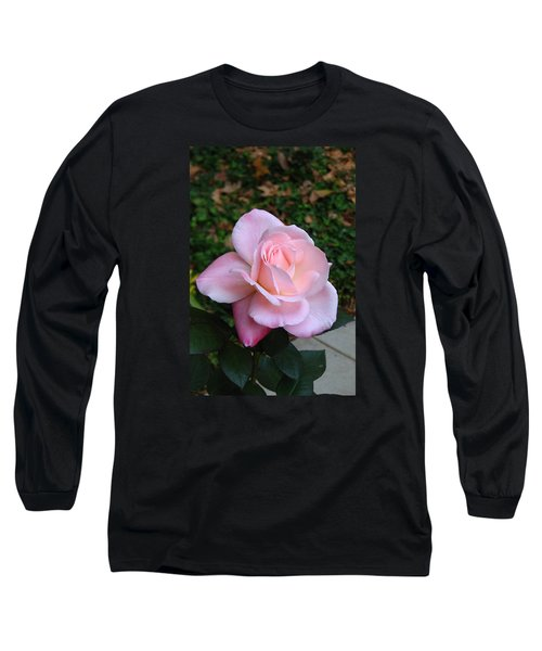 Pink Rose Long Sleeve T-Shirt by Carla Parris