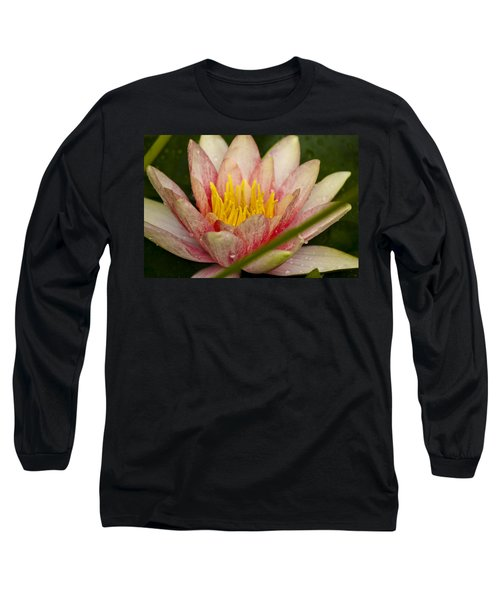 Pink Water Lilly Long Sleeve T-Shirt