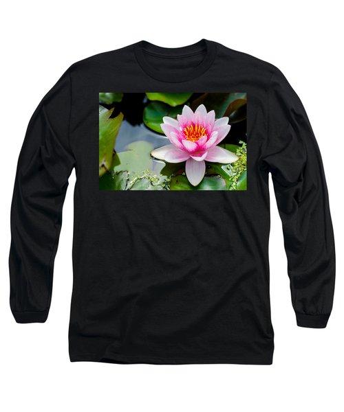 Pink Waterlily Long Sleeve T-Shirt by Daniel Precht