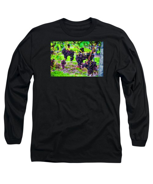 Pinot Noir Grapes Long Sleeve T-Shirt by Rick Bragan