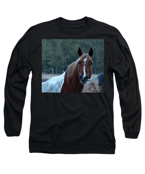 Pinto Long Sleeve T-Shirt