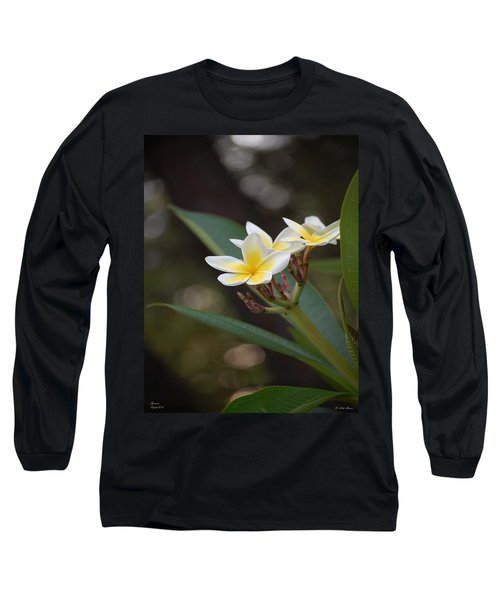 Plumeria II Long Sleeve T-Shirt by Robert Meanor