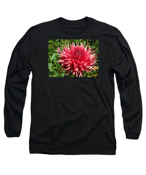 Pointed Pink Dahlia  Long Sleeve T-Shirt
