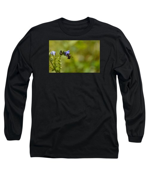 Pollinating  Bee  Long Sleeve T-Shirt by Lyle Crump