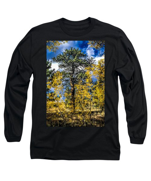 Ponderosa  Tree In The Aspens Of Fall Colorado Long Sleeve T-Shirt