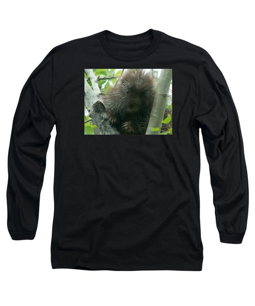Porcupine Tree Long Sleeve T-Shirt