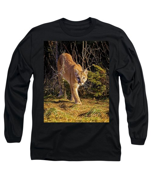 Power And Grace Long Sleeve T-Shirt by Jack Bell