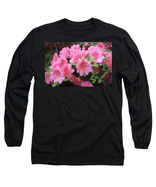 Pretty Pink Azalea Blossoms Long Sleeve T-Shirt