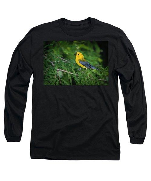 Prothonatory Warbler 9809 Long Sleeve T-Shirt