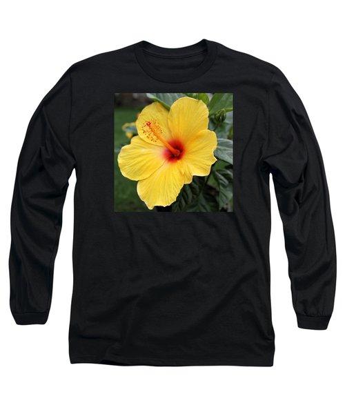 Pua Aloalo Long Sleeve T-Shirt by DJ Florek