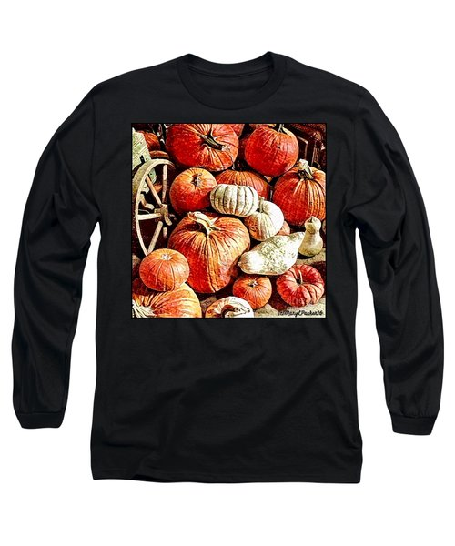 Pumpkins In The Barn Long Sleeve T-Shirt by MaryLee Parker