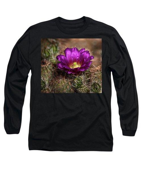 Long Sleeve T-Shirt featuring the photograph Purple Cactus Flower  by Saija Lehtonen