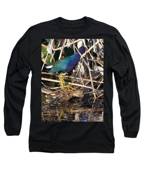 Long Sleeve T-Shirt featuring the photograph Purple Galinule  by Chris Mercer