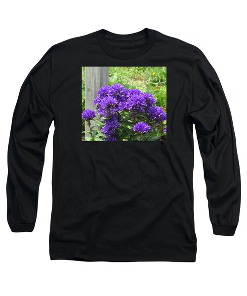 Purple In The Forest Long Sleeve T-Shirt by Jeanette Oberholtzer