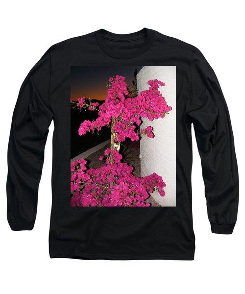 Purple Passion Against Desert Sunset Long Sleeve T-Shirt by Adam Cornelison