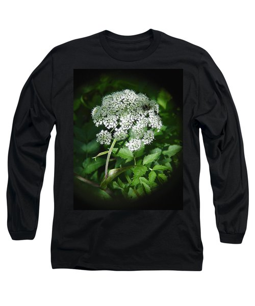 Queen Ann Lace Long Sleeve T-Shirt