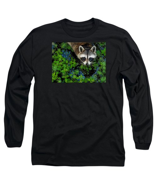 Raccoon Looking Up Long Sleeve T-Shirt