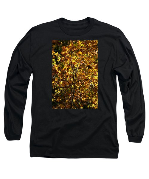 Radiant Leaves Long Sleeve T-Shirt by Karen Harrison