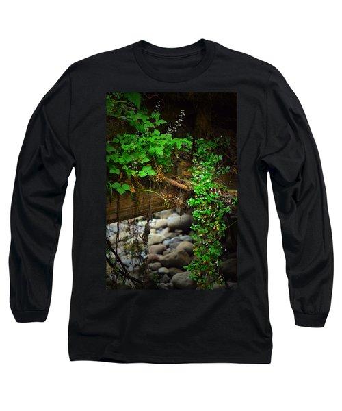Rain Forest Walk Long Sleeve T-Shirt