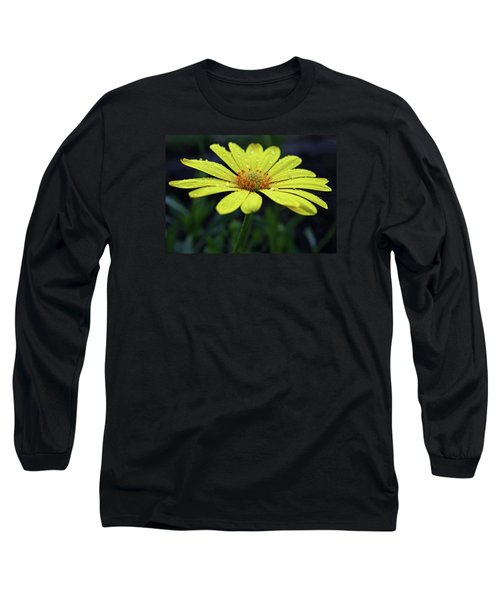 Long Sleeve T-Shirt featuring the photograph Raindrops On Daisy by Judy Vincent