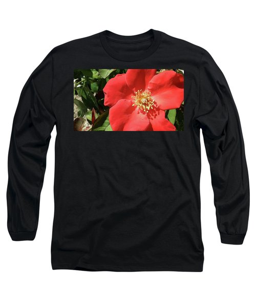 Rambling Rose Watercolor Long Sleeve T-Shirt by Donna G Smith