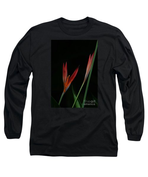 Long Sleeve T-Shirt featuring the photograph Reaching by Pamela Blizzard