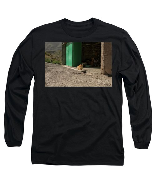 Red Cat And Green Shed Long Sleeve T-Shirt
