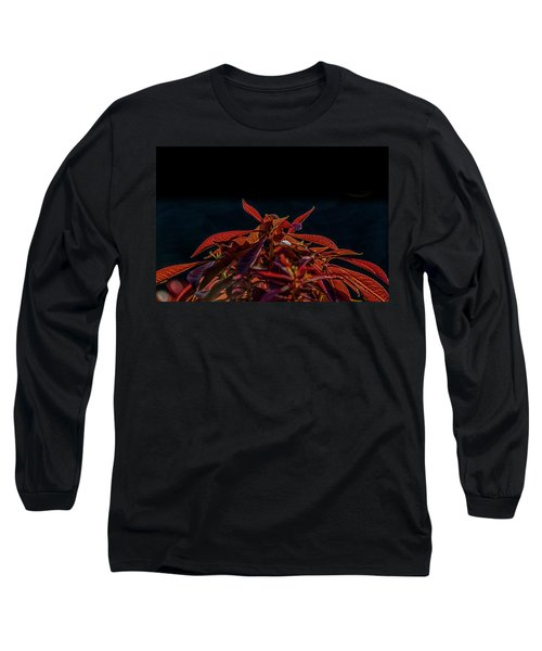 Red Leaves Long Sleeve T-Shirt