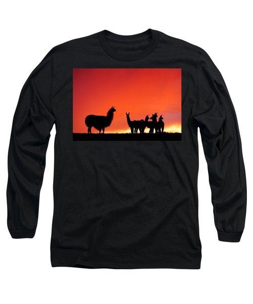 Red Llama Sunset 2 Long Sleeve T-Shirt