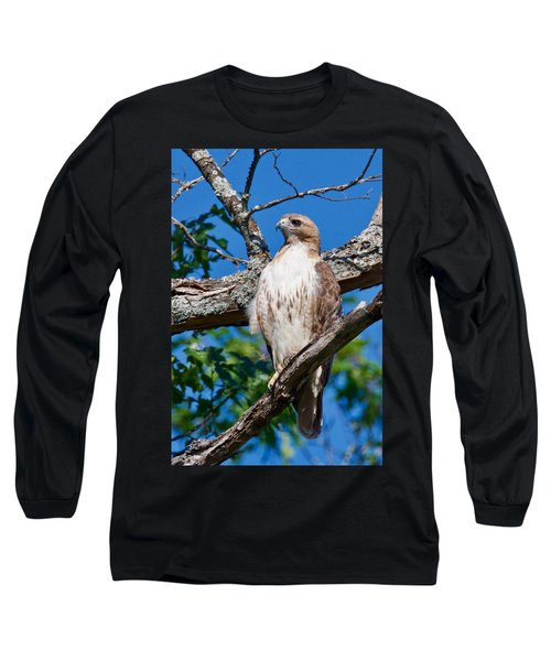 Red-tail Hawk 6813 Long Sleeve T-Shirt