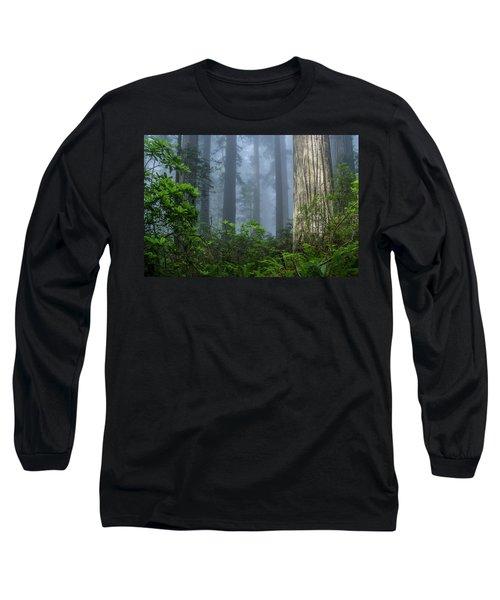 Redwoods In Blue Fog Long Sleeve T-Shirt