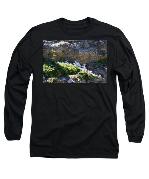 Relaxing In The Shade Long Sleeve T-Shirt