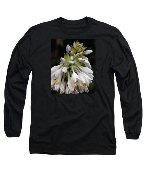 Renaissance Lily Long Sleeve T-Shirt by Marie Hicks