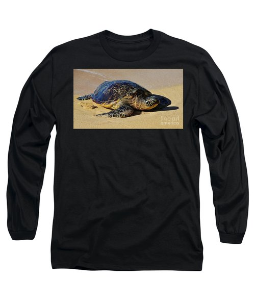 Resting Sea Turtle Long Sleeve T-Shirt by Craig Wood