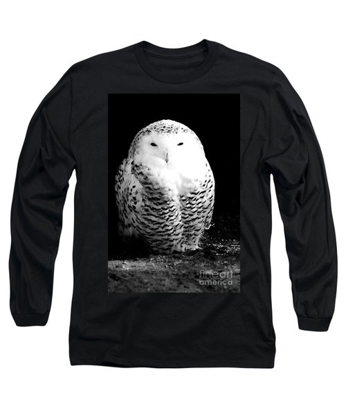 Resting Snowy Owl Long Sleeve T-Shirt by Darcy Michaelchuk