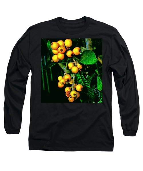 Ripe Loquats Long Sleeve T-Shirt