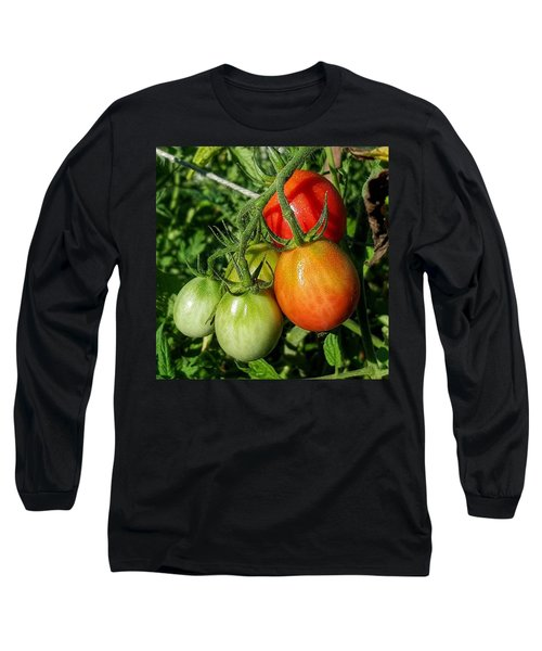 ripening #photography #garden Long Sleeve T-Shirt by Andrew Pacheco
