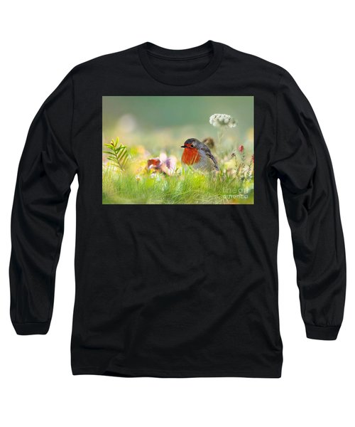 Robin Red Breast Long Sleeve T-Shirt