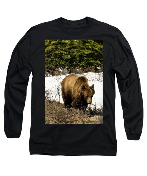 Rockies Grizzly Long Sleeve T-Shirt