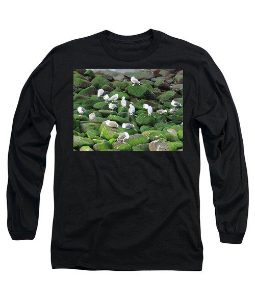 Rocks And Gulls Long Sleeve T-Shirt