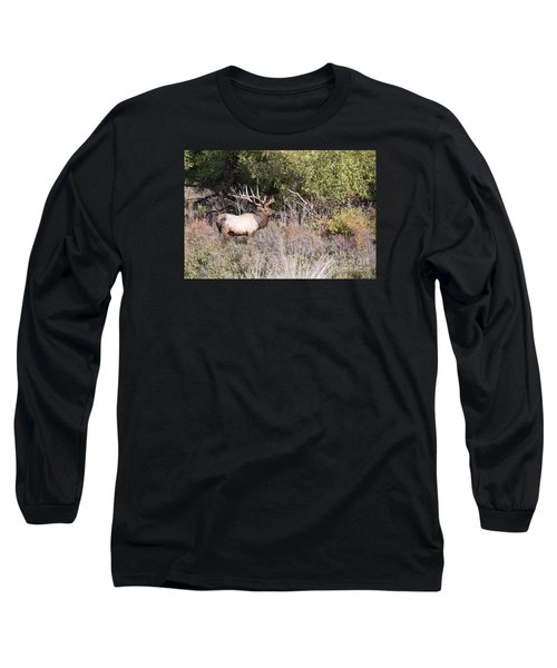 Royal Long Sleeve T-Shirt