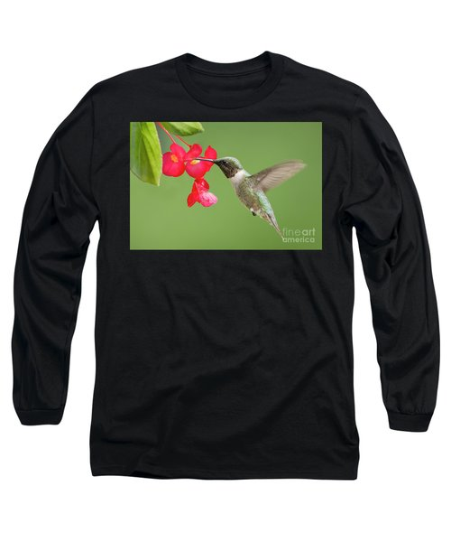 Ruby Throated Hummingbird Feeding On Begonia Long Sleeve T-Shirt by Bonnie Barry