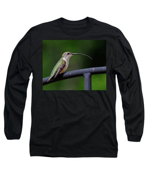 Ruby-throated Hummingbird Tongue Long Sleeve T-Shirt by Ronda Ryan